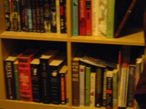 book shelf 2